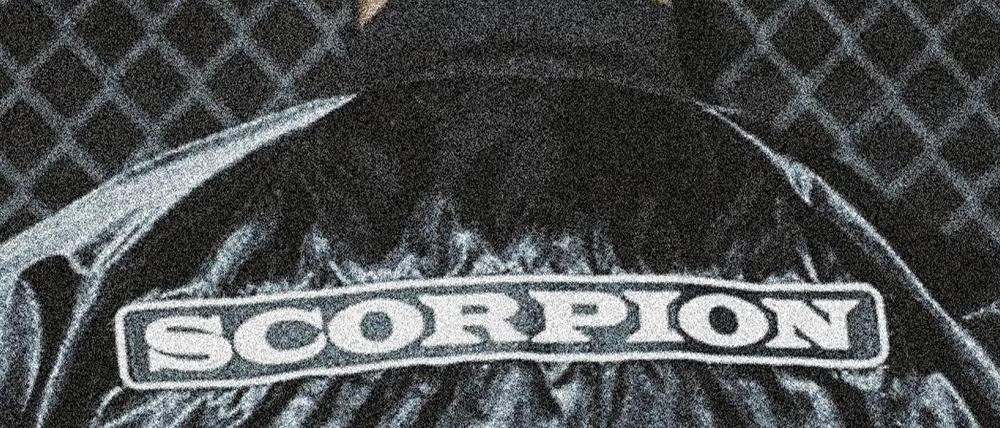 e8bd144371a Millie Bobbie Brown and DJ Khaled Rock Drake's Scorpion Jackets